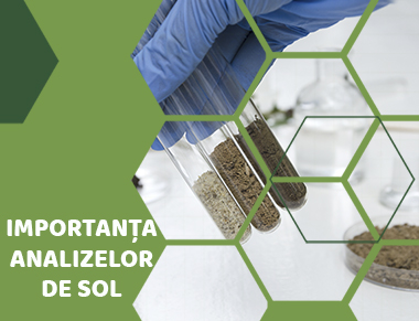 Importanța analizelor de sol