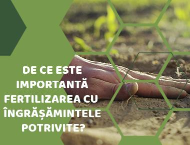 De ce este importantă fertilizarea cu îngrășămintele potrivite?